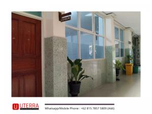 dinding-teraso-green-army-smp-santa-maria-surabaya (1)